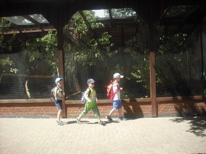 Wild - und Freizeitpark Klotten