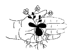 logo-neidenbach